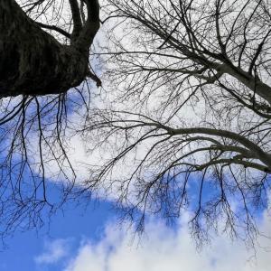 空を見るのが好きになってきた人へ