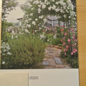 バラと宿根草のある庭 2020写真集