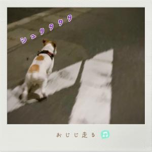 2021/09/23 うっひょひょ〜い♪