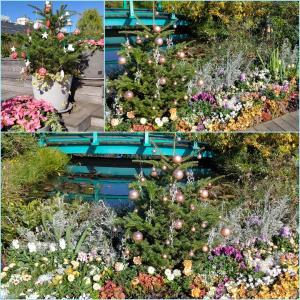 冬のイケセイ屋上庭園