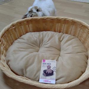 ダイソーの犬用ベッド