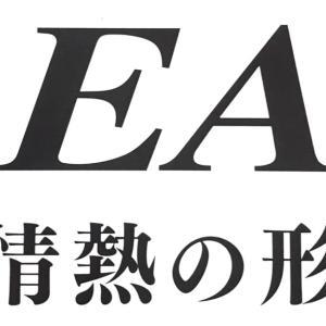 REAL RF204 PHOENIX FIGHTER 遂に姿を現す!発売間近!
