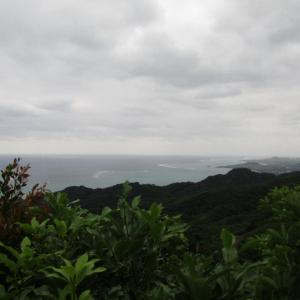 野底マーペー 石垣島