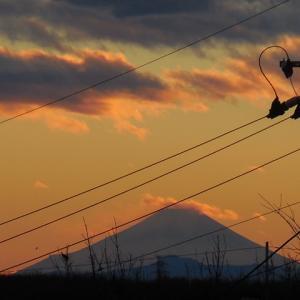 今日は大晦日 2020年最後の富士山