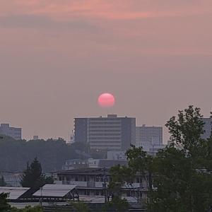 夕陽(#^.^#)