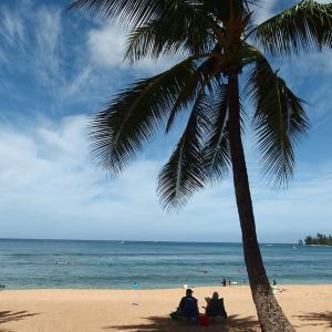 ハレイワのアリィビーチ
