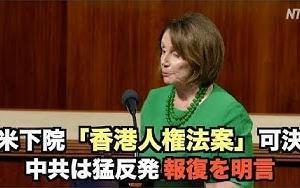 米下院で「香港人権法案」可決 中共は猛反発 報復を明言  NTDTVJP