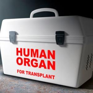 中国の「臓器移植」に関するシンポジウム お金さえあれば数日で手術を受けられる  ザ・リバティWeb