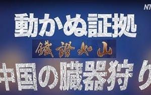 中国の臓器狩り:動かぬ証拠(日本語吹き替え版) 鐵證如山 ドキュメンタリー  NTDTVJP