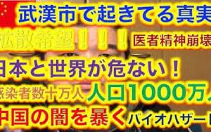 【拡散希望 !!!】バイオハザード、地獄と化した武漢市の真実、中国の闇を暴く。人口1000万人の間で1ケ月以上伝染し続けていた。そして新型コロナウイルスは既に世界中に広く拡散されている。  寛容神