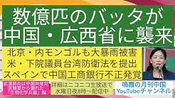 数億匹のバッタが中国・広西省に襲来/北京・内モンゴルも大暴雨被害/米・下院議員台湾防衛法を提出/スペインで中国工商銀行不正発覚 鳴霞の「月刊中国」YouTube