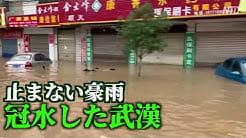 止まない豪雨 長江中下流域に大規模な洪水の恐れ【禁聞】  NTDTVJP  「35日間連続で豪雨予報。武漢の排水システムは麻痺状態、あるいは半麻痺状態」