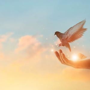 新たな御法話「自助論の大切さ」の開示 ◆「自助論」と「自分勝手にやっていくこと」の違いは?◆「両親にお願いして生まれてくる」「神様・仏様への感謝の大切さ」がわかることも「自助論」!