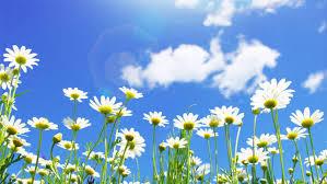 """新たな御法話の開示「『感謝しかない。』―3000回説法を超えて―」 ◆「幸福の科学の映画」に込められた主の念いとは?◆主の""""新たなる志""""とは、どのようなものなのか?"""