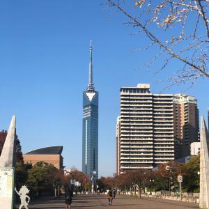福岡タワーと風水の関係