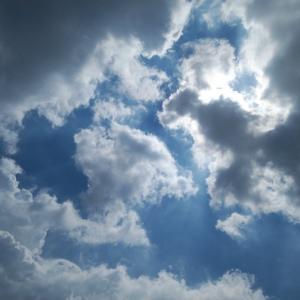 フォトコト『太陽が見えなくても、今いる場所を感じてる』