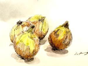 淡路島の玉葱