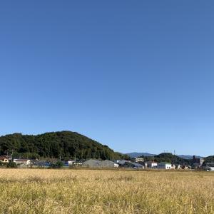 素晴らしいお天気です。