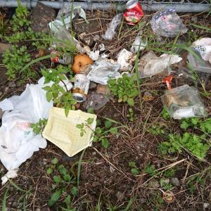 残念です。同一人物が生ゴミの投棄