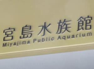 宮島水族館(みやじマリン)。