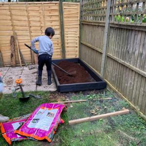 庭のアップデート