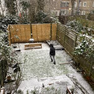 数年ぶりの雪