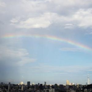 虹はいいなあ