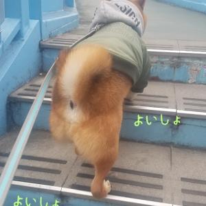 寒いったら…(>_<)