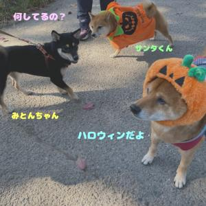 Happy Halloween ♪〈前編〉