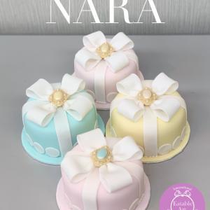 奈良の講習会