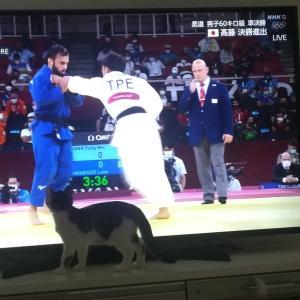オリンピック観戦?!