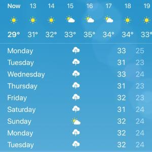 暑いと寒い+寒い日はフォー
