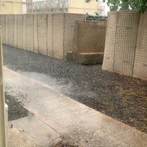 2度目の雨季