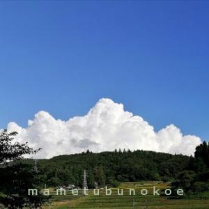 モリモリ膨らんでいく雲