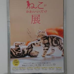 【猫がかわいいだけ展】