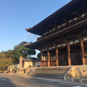 京都の旅3(了)  御室