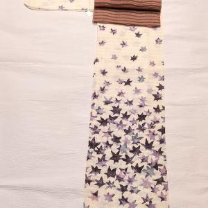 お星様柄の小紋 絽 ~絽綴れの名古屋帯~