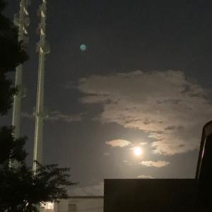 まったり お月見