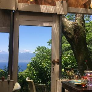 富士の見える変な茶屋