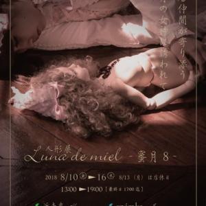 人形展 [Luna de mielー蜜月8ー] に参加します!!