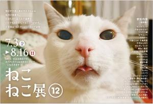 q.e.d. STORE&CAFE「ねこねこ展12」(名古屋市名東区)に 参加します('20/07/03 〜 08/16)