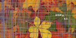 kara-S 秋の合同フェア『おちばのもり』に参加します / 京都 kara-S (10/14~11/4)
