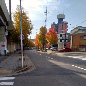 11月17日(日) 街なかの紅葉