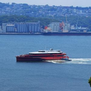 高速船「クイーン ビートル」