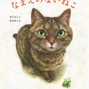 納得の1位。猫好きの心をつかむ大人絵本*なまえのないねこ