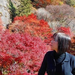 奇岩と紅葉