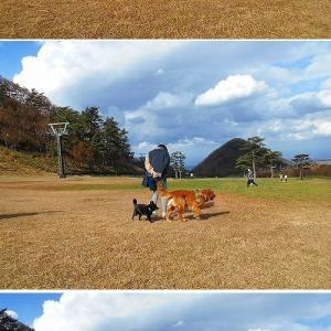 大山の旅 with レビン ③