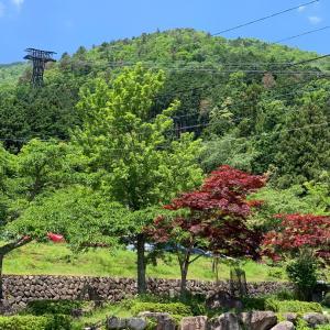 琵琶湖テラスへ
