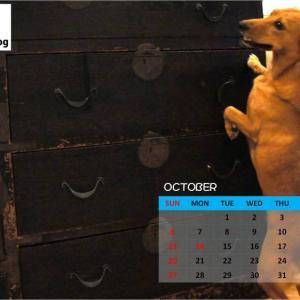 バロンドッグカレンダー10月号(いまさらですが・・・・メンゴ)