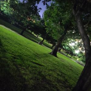 *夏の夜のいろあい